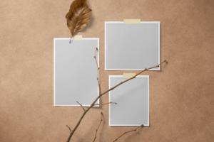 Free Polaroid Mood Board Mockup