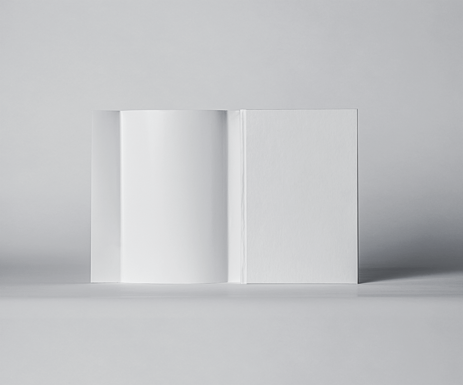 Free Dust Jacket and Hardcover Book Mockup