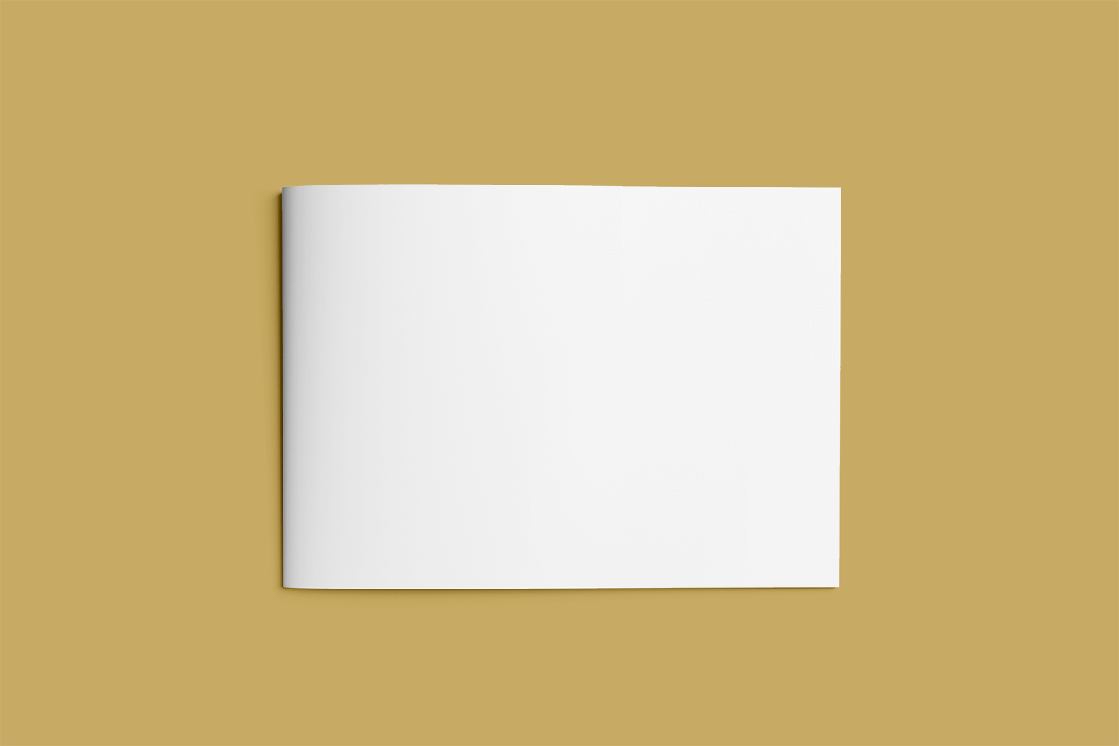 Free Landscape Brochure (A4) Mockup Collection
