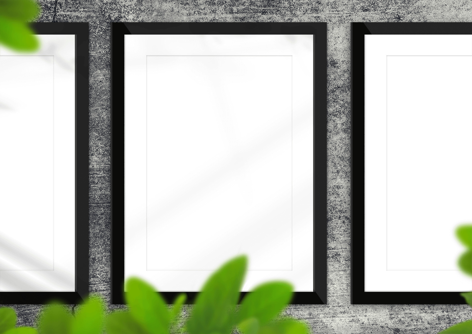 Free Picture Frames on Concrete Wall Mockup