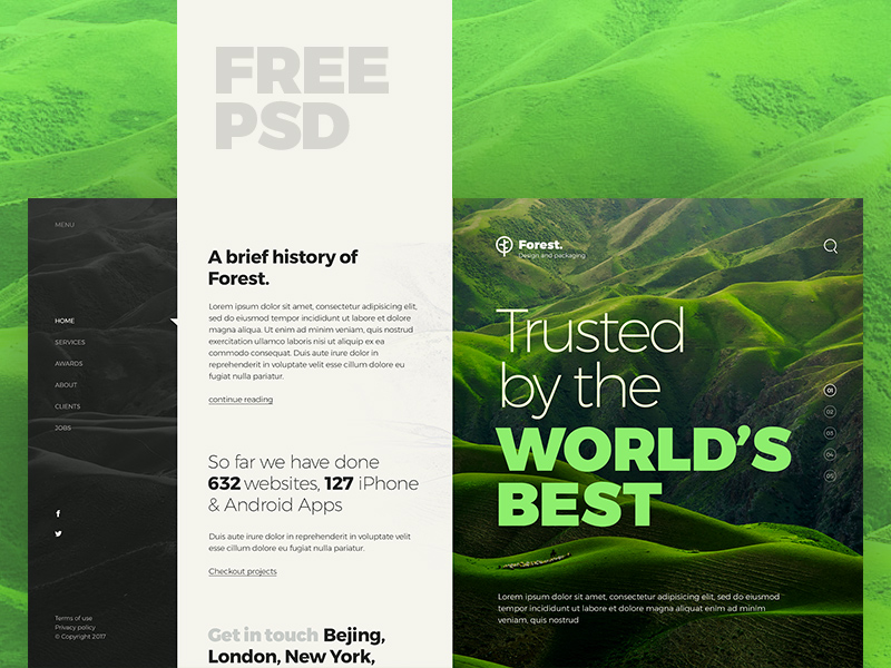 Forest Website Template PSD