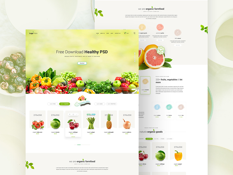 Healthy Food Website Template PSD