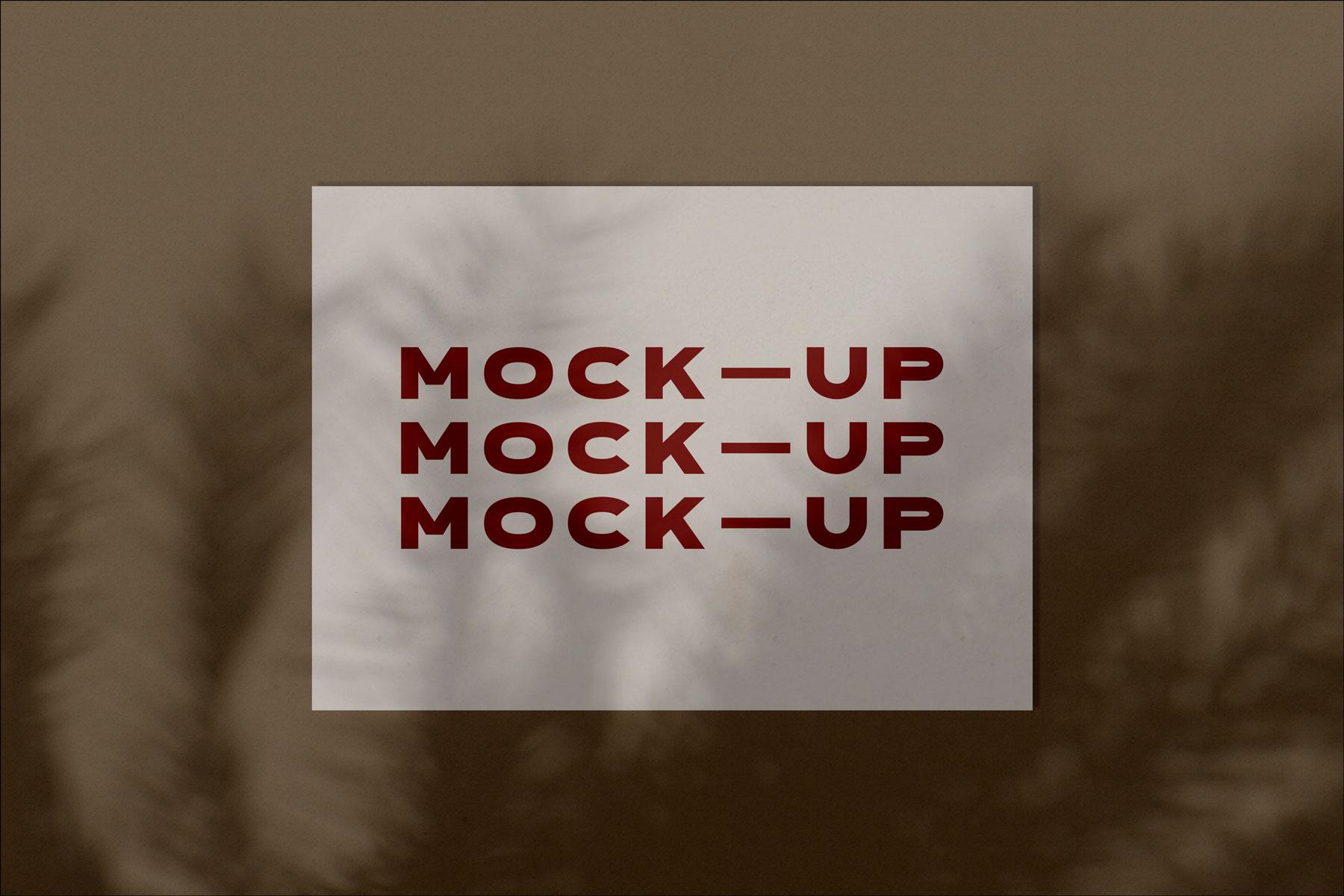 Free Shadow Poster Mockup1