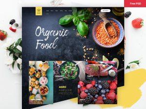 Organic Food Website Template